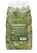 Coneflower 紫錐花葉