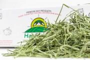 HayRabbit Premium 2nd Cut Timothy Hay 3bls