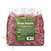 Rose Petals 玫瑰花瓣