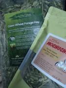英國小麥草 Green Wheat Forage Hay 100g